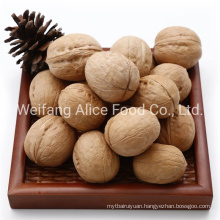 Export Standard Halal Kosher Certificated High Qaulity Cheap Price Walnut with Shell