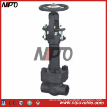 Forged Low Temperature Gate Valve