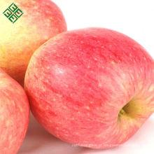 chinês fresco vermelho suculento fuji maçã maçã fresca (gala)