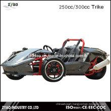 3 Wheel Car for Sale Drift Trike Japan Trike Motorcycle Ztr 250cc EEC