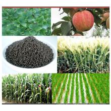 Various Kinds Compound Diammonium Phosphate Fertilizer 18-46-0 DAP Fertilizer