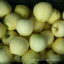 Professional Supplier for Chinese Fresh Golden Apple