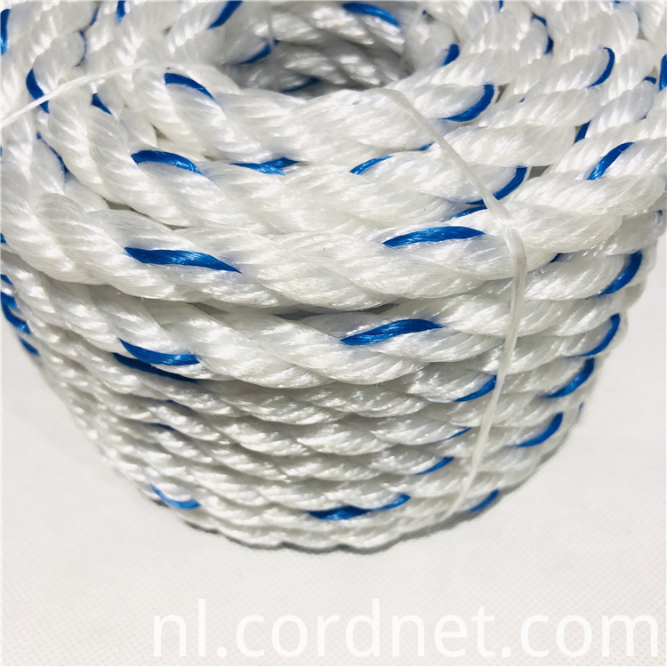 White With Blue Pp Multifilament Rope 4