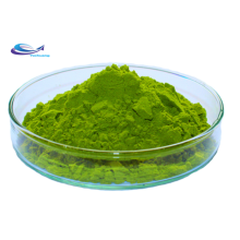 Organic Chinese Plant Extract Broccoli Extract