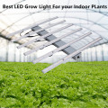 Luces de cultivo LED Grow Light para plantas de interior