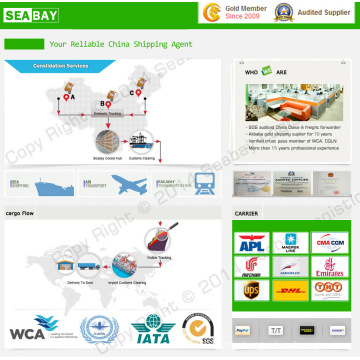 Professional Local Qingdao Shipping Company