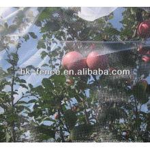 Filet d'agriculture / Maille d'insecte / Filet de maille d'arbre de fruit