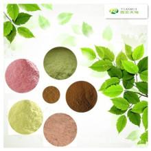 Senna Leaf Extract 6% -20% Sennosides