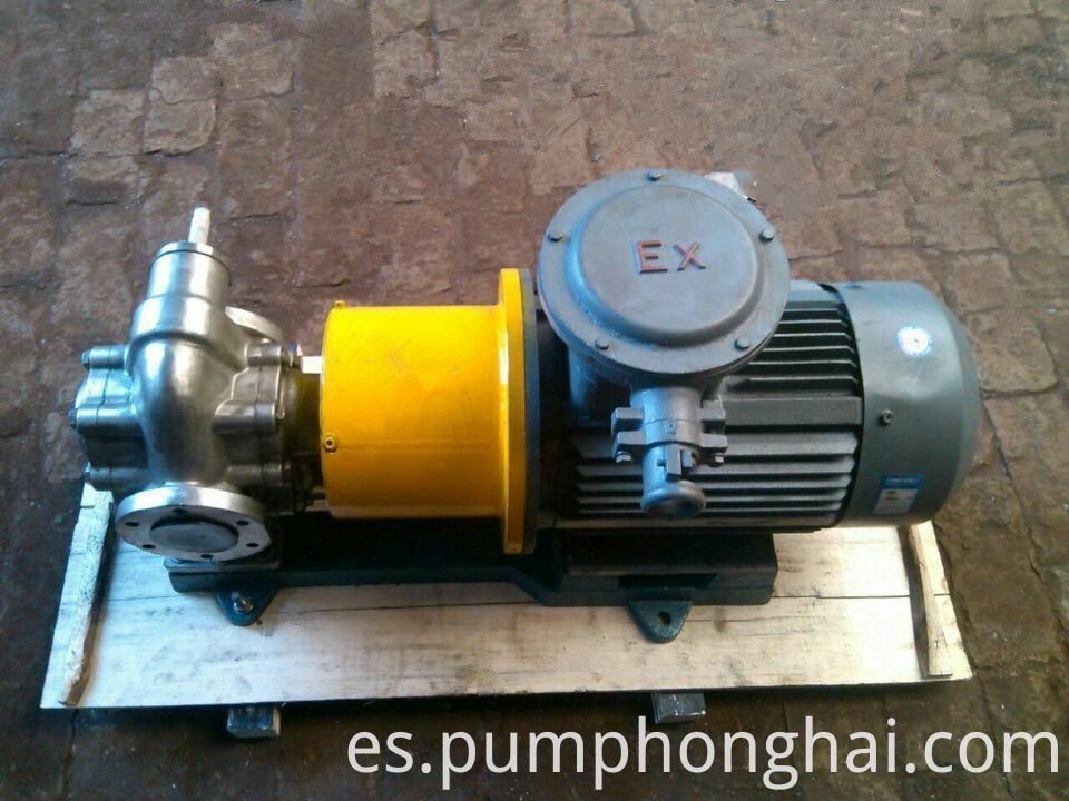 Magnetic Drive Gear Oil Pump 3