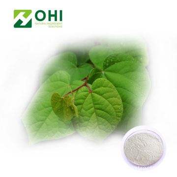 Polygonum Cuspidatum Extract Powder