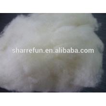 Laine de mouton récurée en gros chinois à vendre, 100% laine de mouton pure, laine de mouton blanc naturel