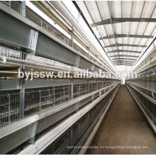 Курица яйценоскость птицы Оборудование для продажи в Филиппины