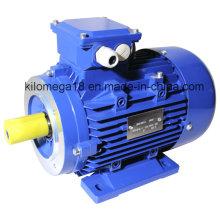 Три фазы электрического двигателя литого железа с сертификатом CE 7,5 кВт