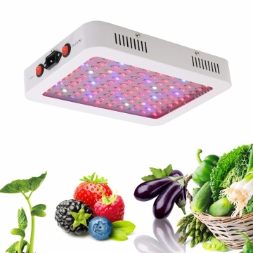 Grow Light Seedling Grow Zimmerpflanzen 1000w