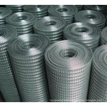 Galvanized Welded Wire Mesh Anping Factory