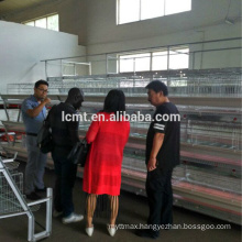 wholesale cheap price chicken breeding cages for sale