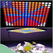 Feu de lumière LED 45W LED
