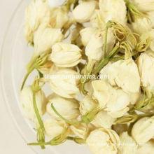 Flores de jasmim nos EUA