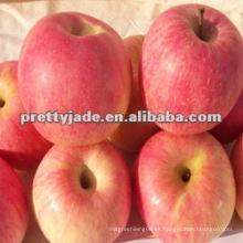 China fuji manzana