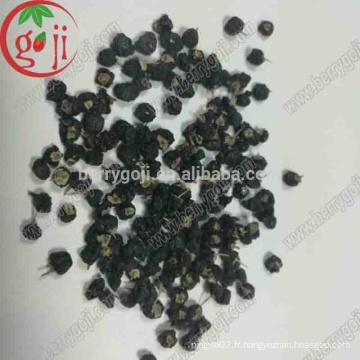 Nouveaux baies de goji noires arrières / Black wolfberry