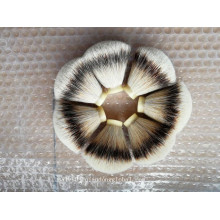 22 / 65mm Fan Form Silvertip Dachs Haar Knoten