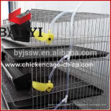 Cage de caille de couche pour l'équipement de ferme de volaille