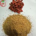 Red Goji Berry Seed /Lycium Barbarum seeds
