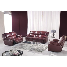 Living Room Genuine Leather Sofa (805)