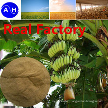 Real Factory Amino Acids Vegetable Source Free From Chloridion Amino Acids