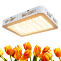 Lampu Led Terlaris 2020 1000W Grow Lights