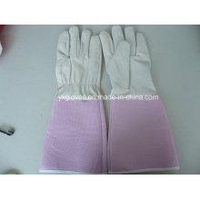 White Glove-Pink Glove-Safety Glove-Garden Glove