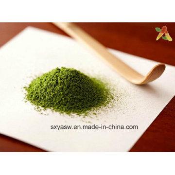 Sombra Crecido Verde Vapor Tencha Polvo de Té Verde Matcha