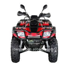 China Lieferanten Buyang Fahrzeug 300cc ATV (FA-D300)