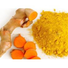 Herbal Extract- Curcuma Longa Extract