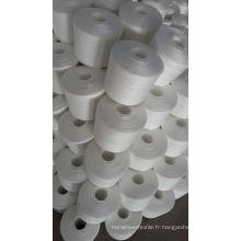 100% Polyester filé pour Jeans (20S / 3)