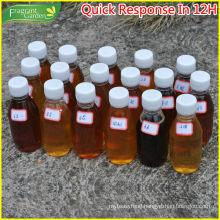 fruit honey