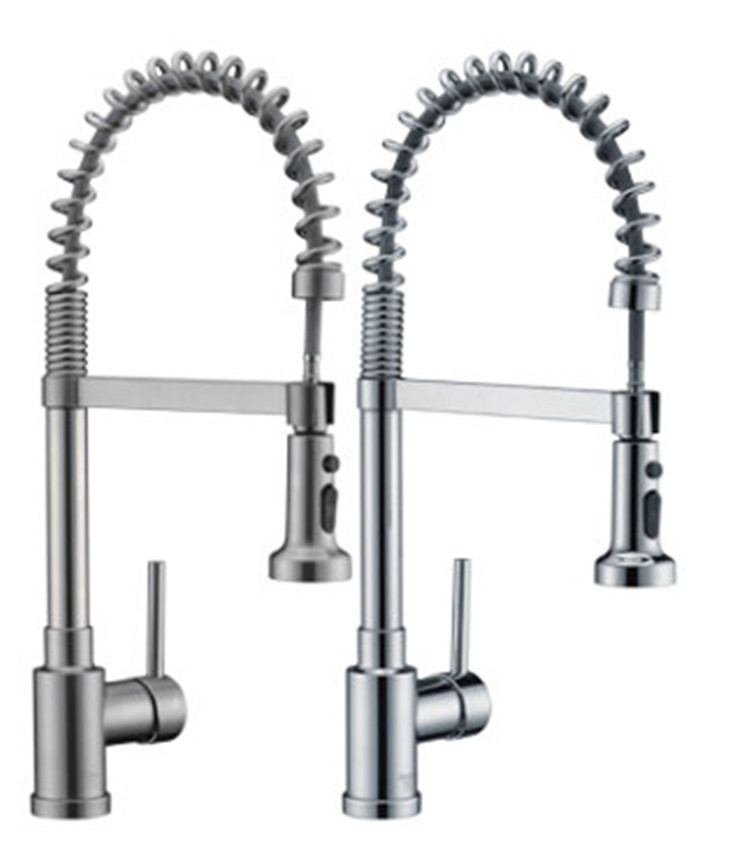 Kitchen faucet with Flexible Sprayer Hose