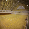 Pvc lapangan basket indoor