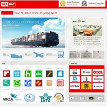 Guangzhou Shenzhen Shipping Forwarder Service