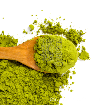 Etiqueta privada del OEM Venta al por mayor Green Tea Matcha Powder