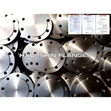 PN 10 Blind Raised Face BLRF Flange