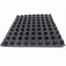 High quality manufacturer HDPE plastic drainage plate DX-H20