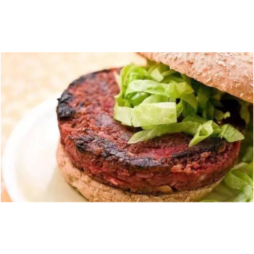 Ingrediente TG Enzyme Burger Patties