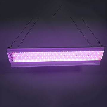 150W Linear Full Spectrum LED Grow Light