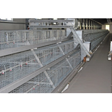 Poultry Farm Equipment Chicken Cage