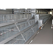 Broiler Battery Chicken Cage System