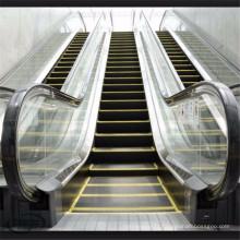 Escalator d'intérieur extérieur d'étape commerciale de balustrade automatique de début