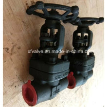 ANSI 800lb Forged Steel A105 Thread End Gate Valve