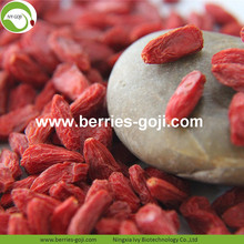 Makanan Super High Quality Goji bayas kering