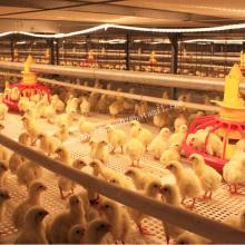 Автоматическая клетка для птицы для цыплят-бройлеров
